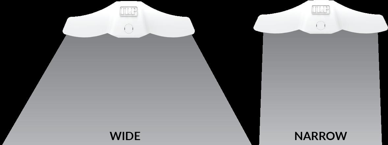 EDV-Wide-Narrow