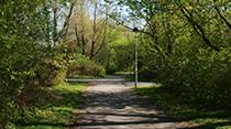https://www.ilp-inc.com/wp-content/uploads/2019/08/Park_Pathway_Thumbnail.png