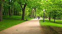 https://www.ilp-inc.com/wp-content/uploads/2019/08/Park_Walkway_Thumbnail.png